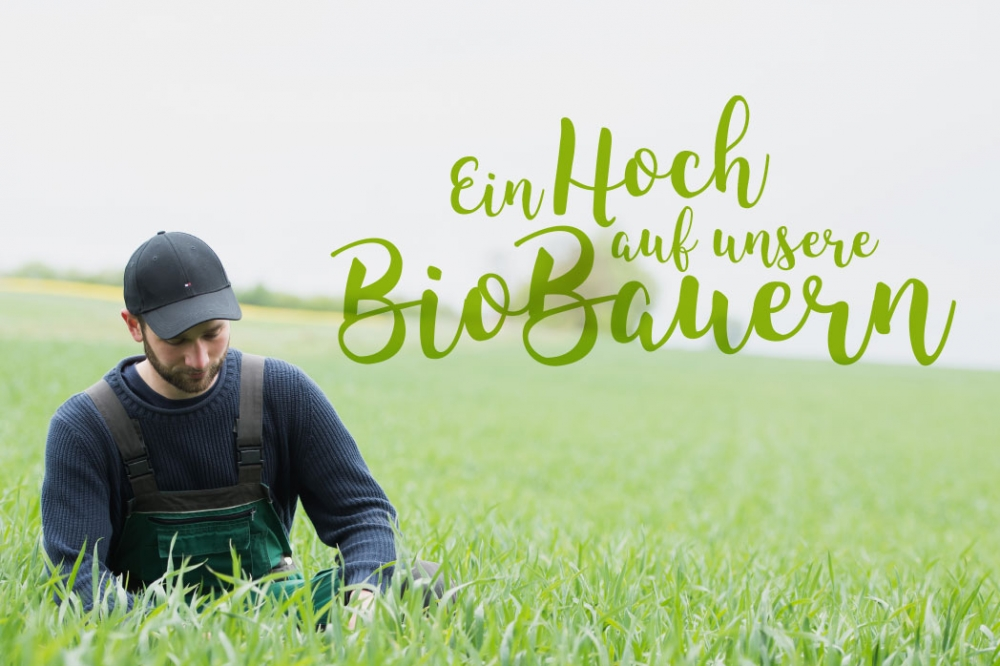 Logoform boerner07